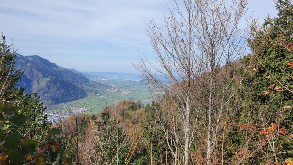 Blick auf die Linthebene Richtung Obersee